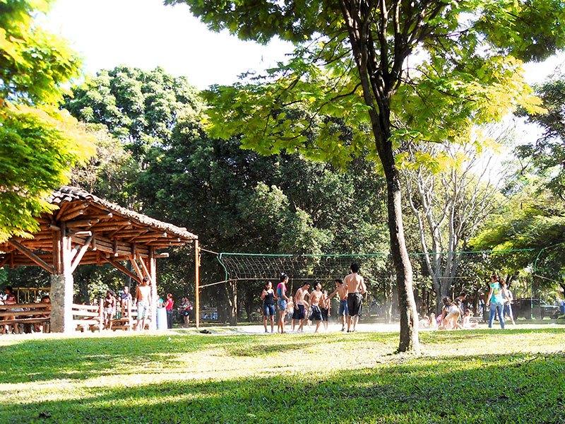 El Parque de las Guaduas