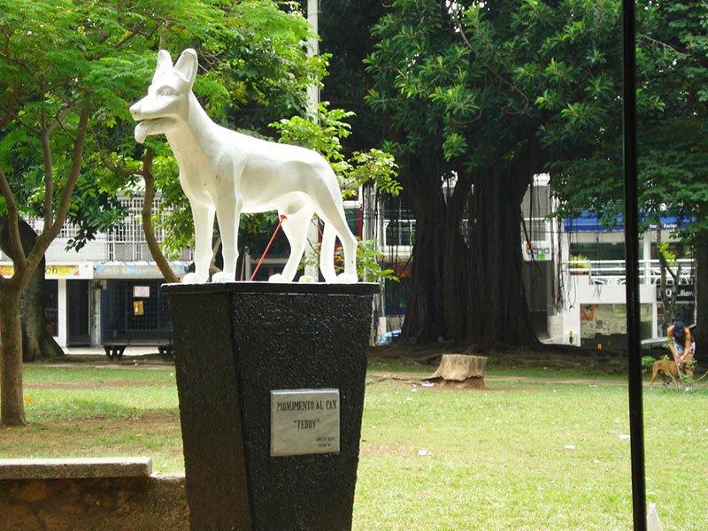 El Parque del perro